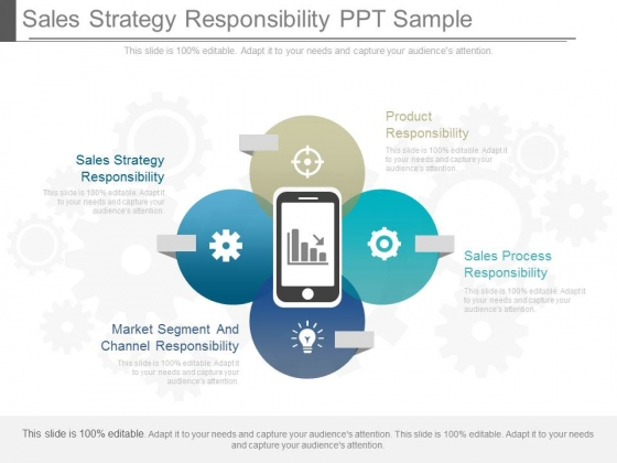 Sales Strategy Responsibility Ppt Sample