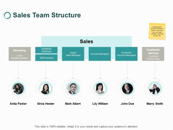 Sales Team Structure Marketing Ppt PowerPoint Presentation Outline Vector