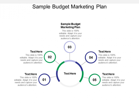 Sample Budget Marketing Plan Ppt PowerPoint Presentation Pictures Layout Ideas Cpb