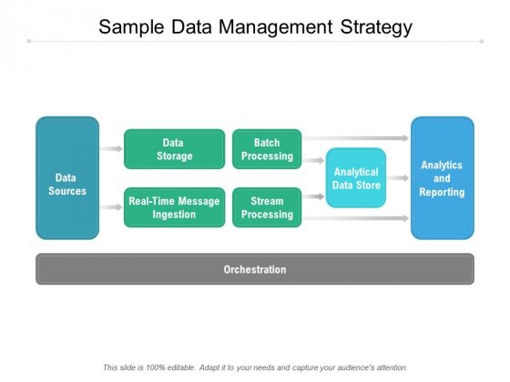Sample Data Management Strategy Ppt PowerPoint Presentation Infographic Template Template