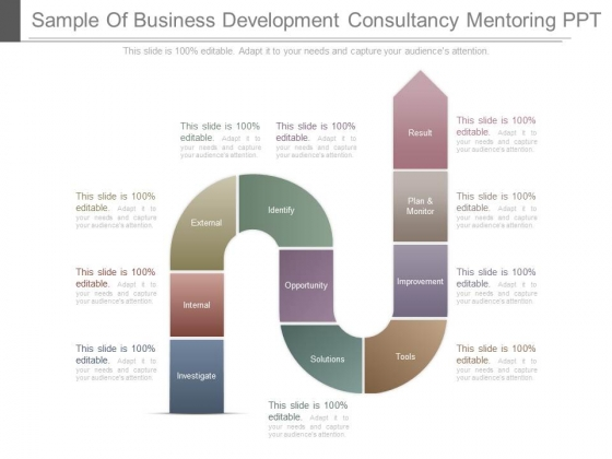 Sample Of Business Development Consultancy Mentoring Ppt
