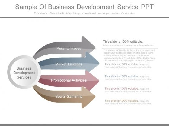 Sample Of Business Development Service Ppt