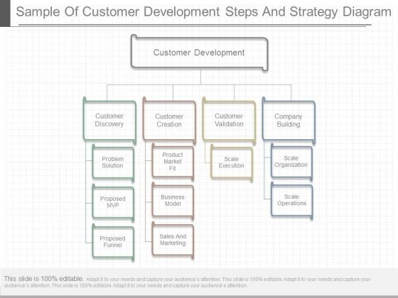 Sample Of Customer Development Steps And Strategy Diagram