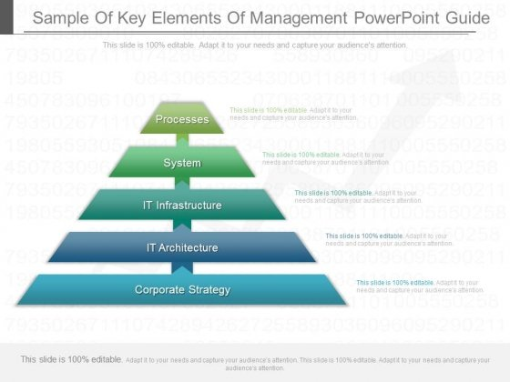 Sample Of Key Elements Of Management Powerpoint Guide