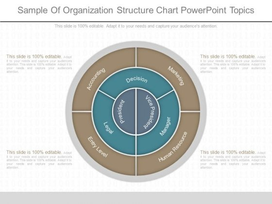 Sample Of Organization Structure Chart Powerpoint Topics