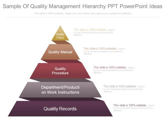 Sample Of Quality Management Hierarchy Ppt Powerpoint Ideas