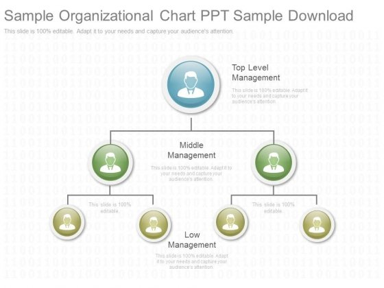 Sample Organizational Chart Ppt Sample Download