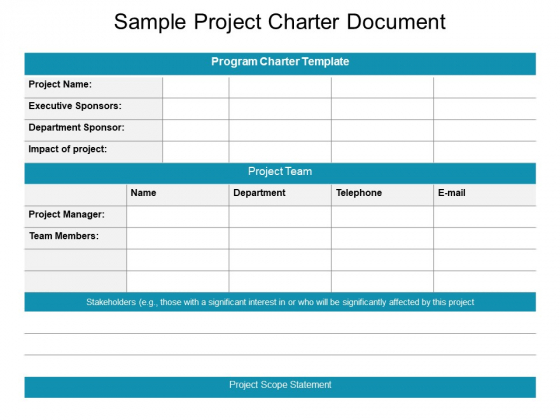 project charter executive summary example