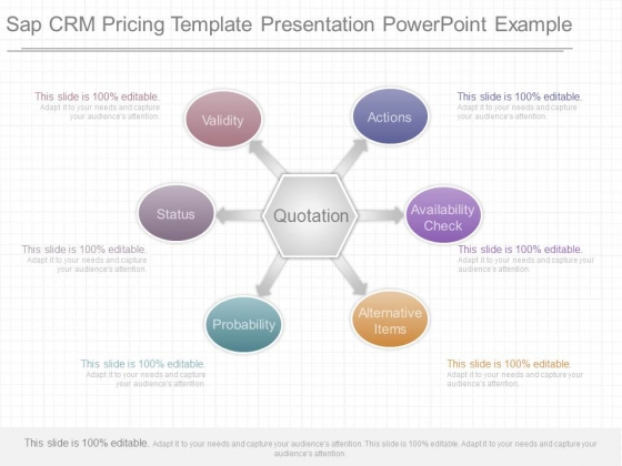 Sap Crm Pricing Template Presentation Powerpoint Example