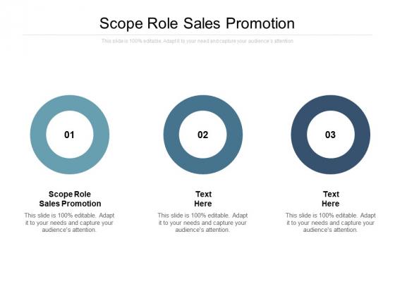 Scope Role Sales Promotion Ppt PowerPoint Presentation Model Show
