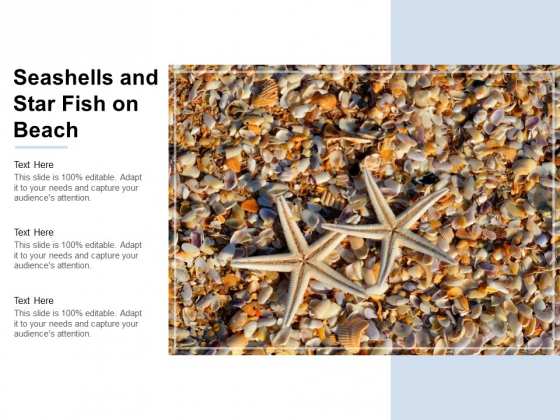 Seashells And Star Fish On Beach Ppt Powerpoint Presentation Outline Grid