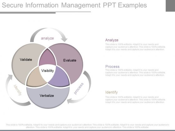 Secure Information Management Ppt Examples