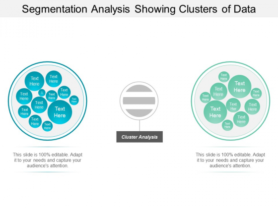 Segmentation Analysis Showing Clusters Of Data Ppt PowerPoint Presentation Ideas Designs Download