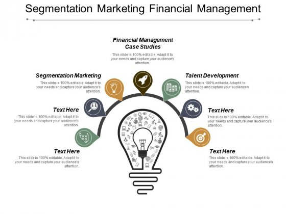 Segmentation Marketing Financial Management Case Studies Talent Development Ppt PowerPoint Presentation File Tips