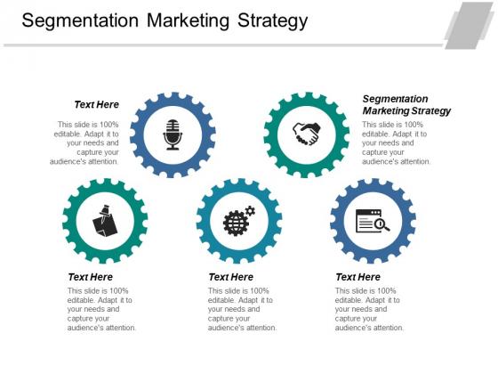 Segmentation Marketing Strategy Ppt PowerPoint Presentation File Layout