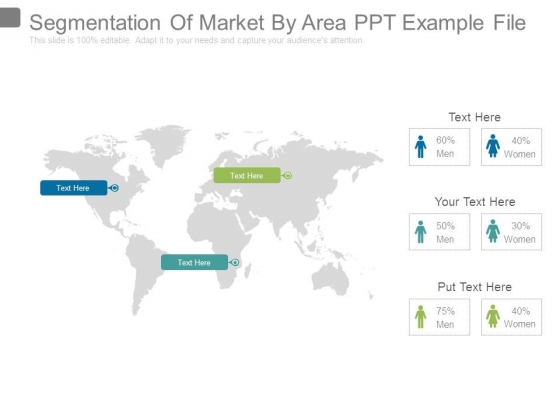 Segmentation Of Market By Area Ppt Example File