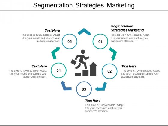 Segmentation Strategies Marketing Ppt PowerPoint Presentation Professional Template Cpb