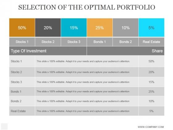 Selection Of The Optimal Portfolio Template Ppt PowerPoint Presentation Ideas
