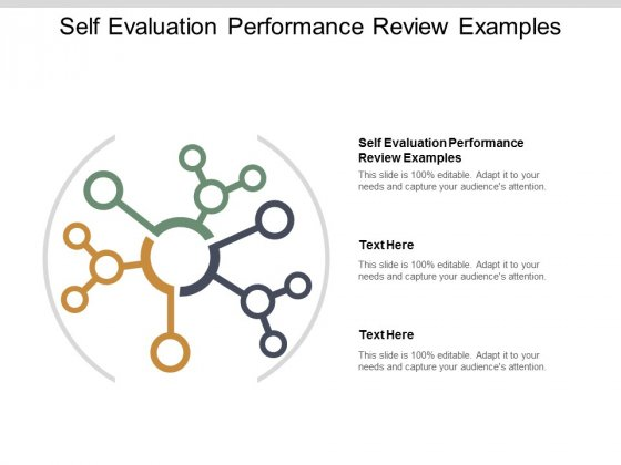 Self Evaluation Performance Review Examples Ppt PowerPoint Presentation Outline Topics Cpb