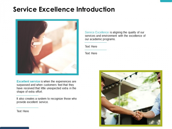 Service Excellence Introduction Ppt PowerPoint Presentation Outline Graphics Example