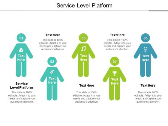 Service Level Platform Ppt PowerPoint Presentation Slides Graphics Design Cpb