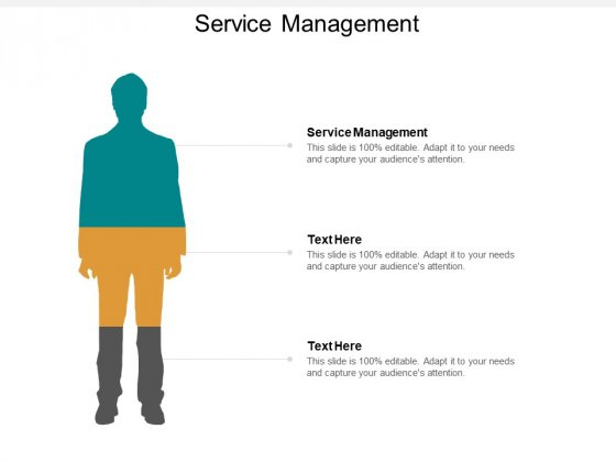 Service Management Ppt PowerPoint Presentation Infographics Tips Cpb