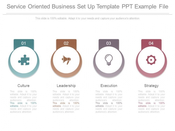 Service Oriented Business Set Up Template Ppt Example File