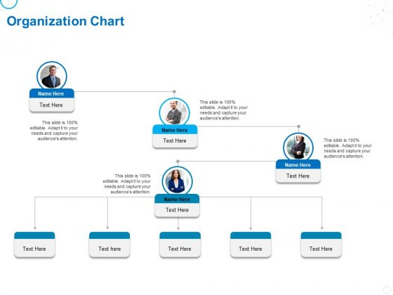 Service Strategy And Service Lifecycle Implementation Organization Chart Ppt Gallery Example PDF