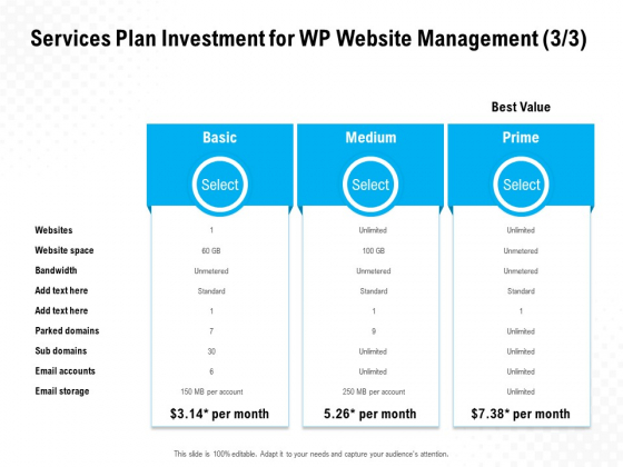 Services Plan Investment For WP Website Management Basic Ppt PowerPoint Presentation File Slides