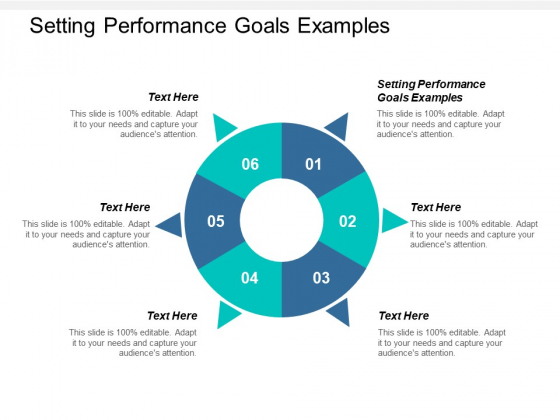 Setting Performance Goals Examples Ppt PowerPoint Presentation Icon Designs Download Cpb