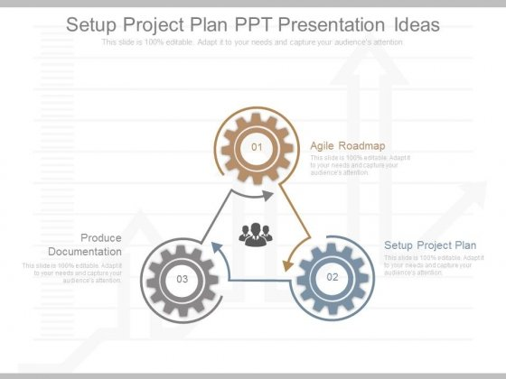 Setup Project Plan Ppt Presentation Ideas