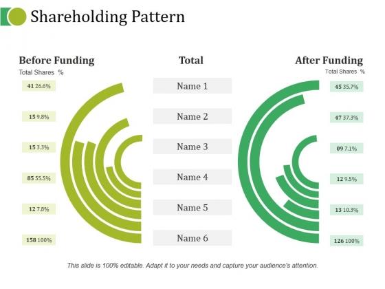 Shareholding Pattern Ppt PowerPoint Presentation Summary Smartart