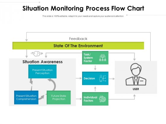 Situation Monitoring Process Flow Chart Ppt PowerPoint Presentation Pictures Show PDF