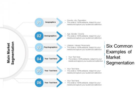Six Common Examples Of Market Segmentation Ppt PowerPoint Presentation Gallery Good PDF