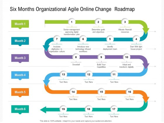 Six Months Organizational Agile Online Change Roadmap Background