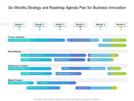 Six Months Strategy And Roadmap Agenda Plan For Business Innovation Guidelines