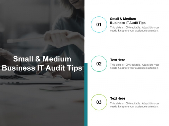 Small And Medium Business IT Audit Tips Ppt PowerPoint Presentation Show Cpb