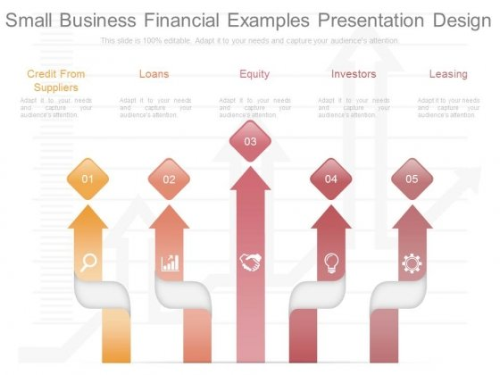 Small Business Financial Examples Presentation Design