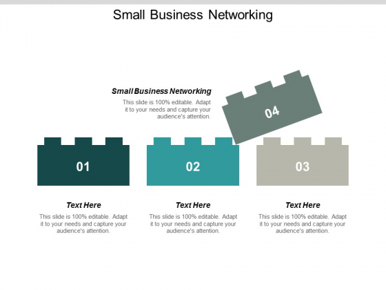 Small Business Networking Ppt PowerPoint Presentation Show Images Cpb