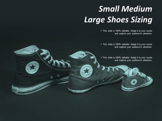 Small Medium Large Shoes Sizing Ppt Powerpoint Presentation