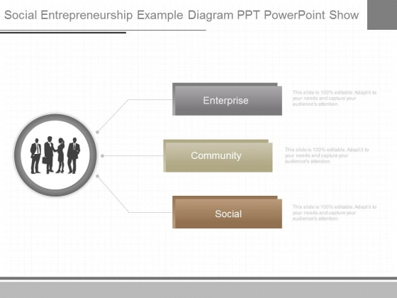 Social Entrepreneurship Example Diagram Ppt Powerpoint Show