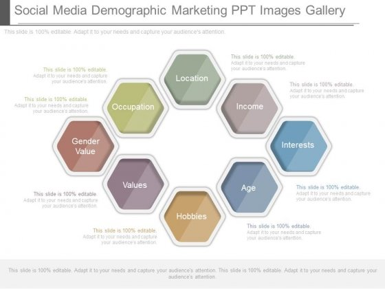 Social Media Demographic Marketing Ppt Images Gallery