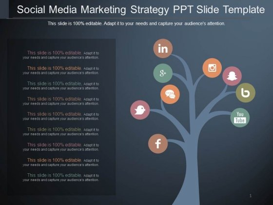 Social Media Marketing Strategy Ppt Slide Template