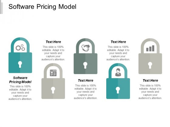Software Pricing Model Ppt PowerPoint Presentation Pictures Influencers Cpb