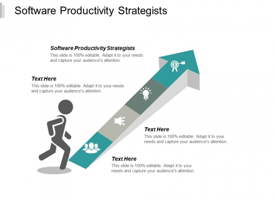 Software Productivity Strategists Ppt PowerPoint Presentation Show Maker Cpb