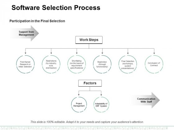Software Selection Process Ppt PowerPoint Presentation Professional Icons