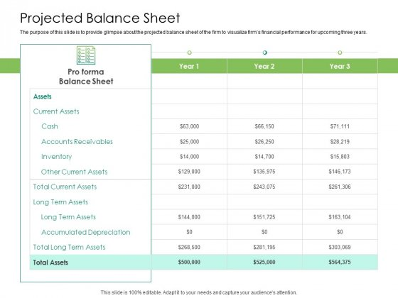 Solvency Action Plan For Private Organization Projected Balance Sheet Information PDF