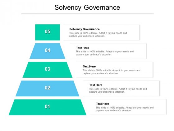 Solvency Governance Ppt PowerPoint Presentation Pictures Graphic Tips Cpb Pdf