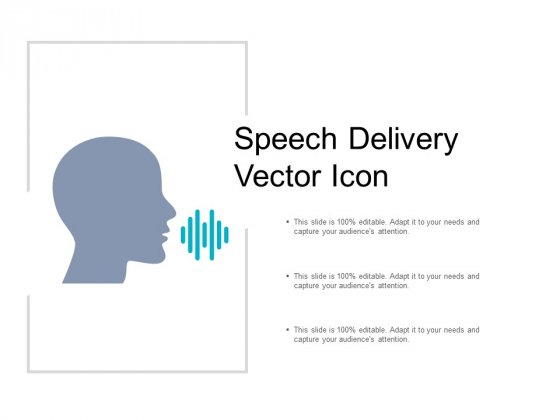 Speech Delivery Vector Icon Ppt PowerPoint Presentation Portfolio Structure