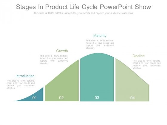 Stages In Product Life Cycle Powerpoint Show